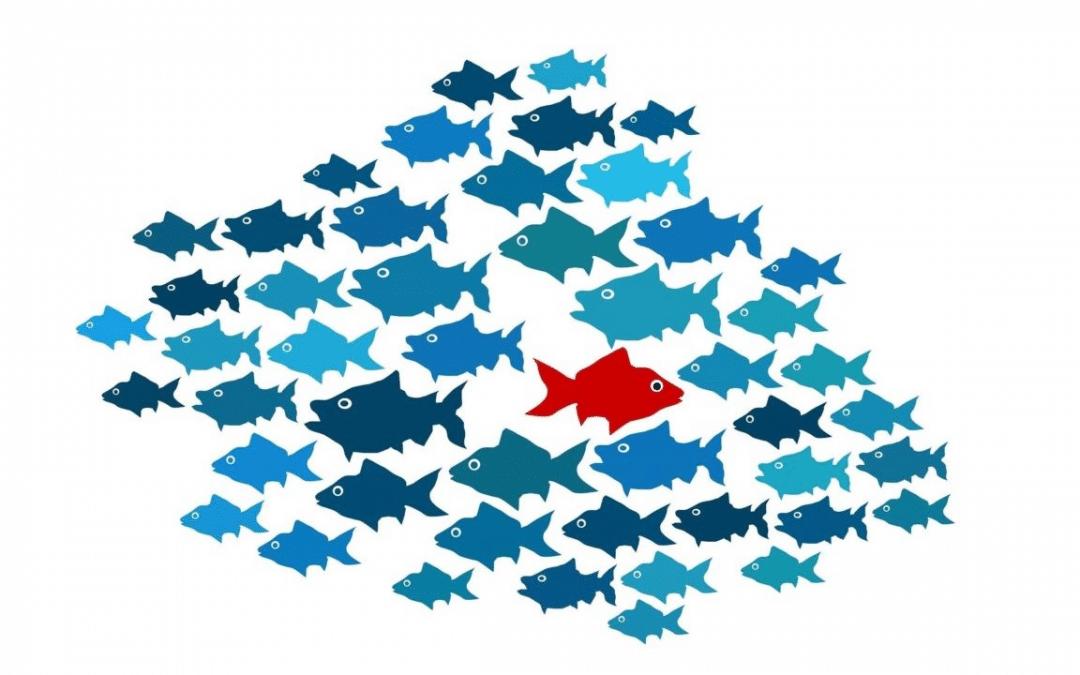 Corporate Venturing: voor wanneer je te groot bent om snel te veranderen